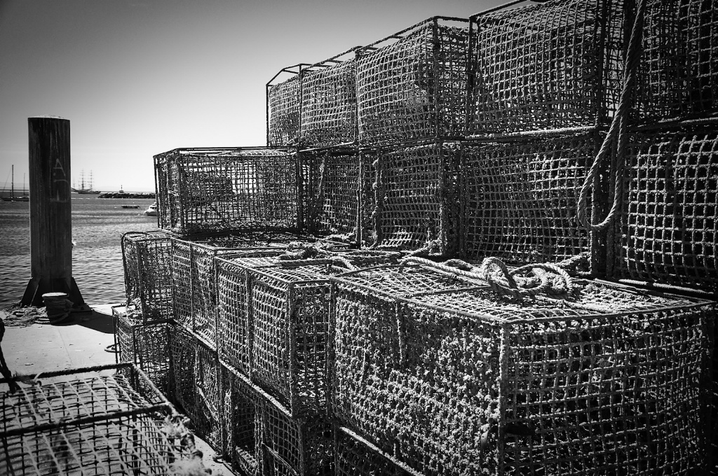 Lobster Traps in Cascais