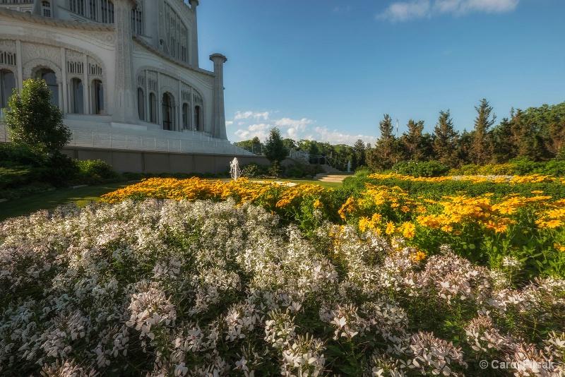 Bahai Beautiful Blooms