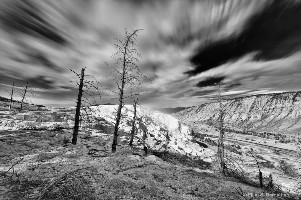Yellowstone 91