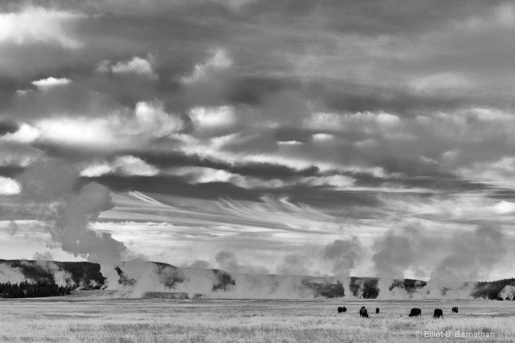 Yellowstone 84