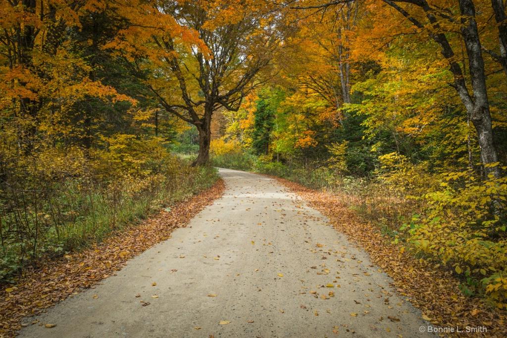 Baxter Tote Road