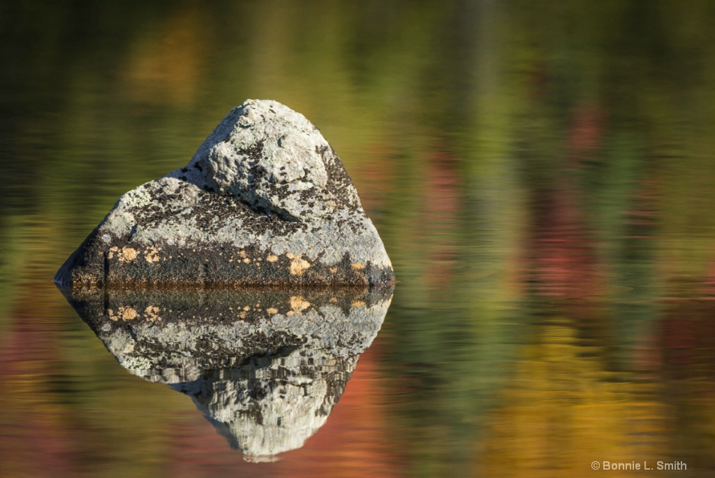 Rock with Fall Reflection