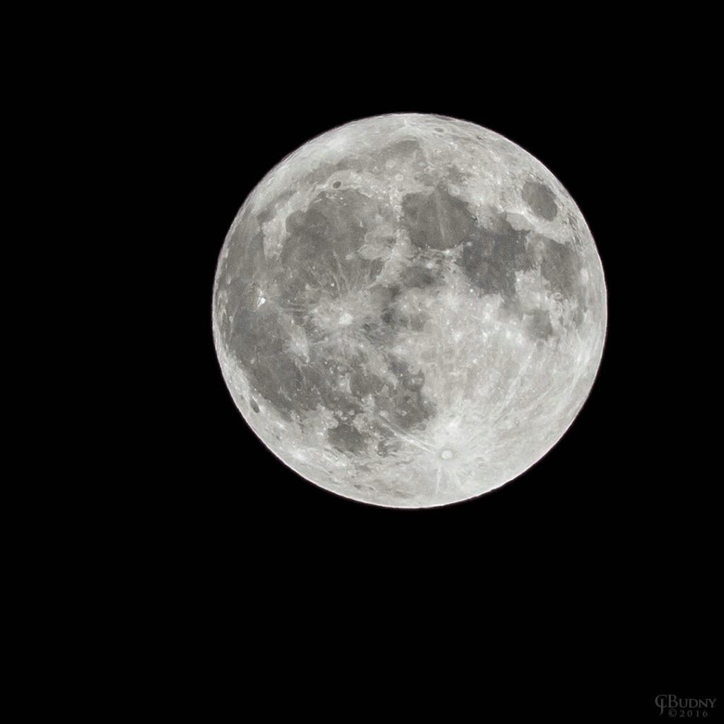 Super Hunter Moon