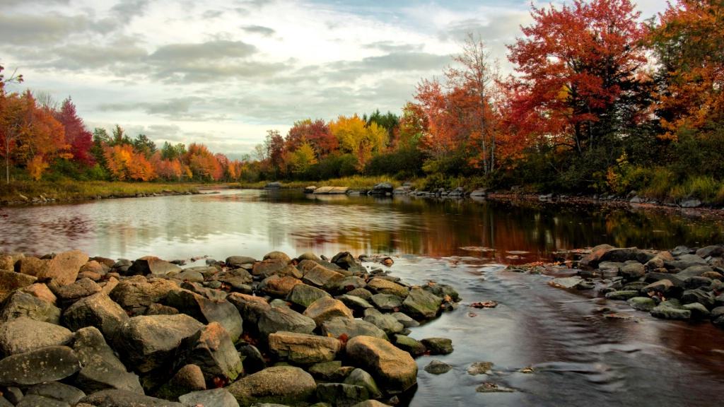 Northeast Creek