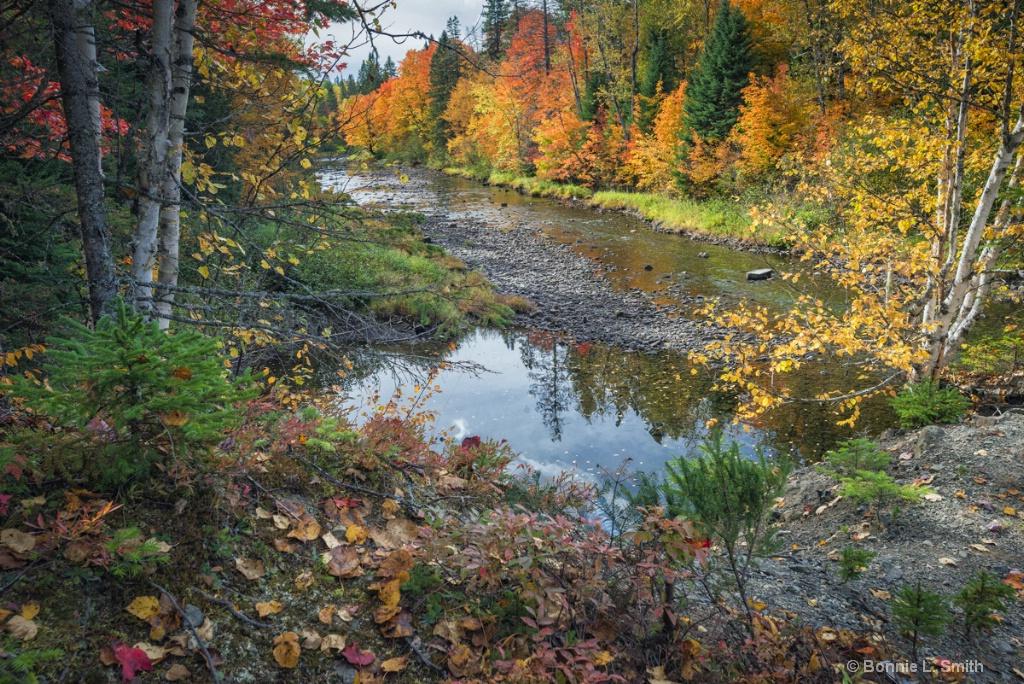Ponds Brook