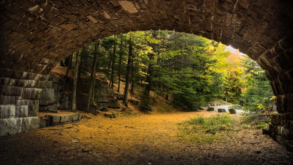 Under the Carriage Bridge
