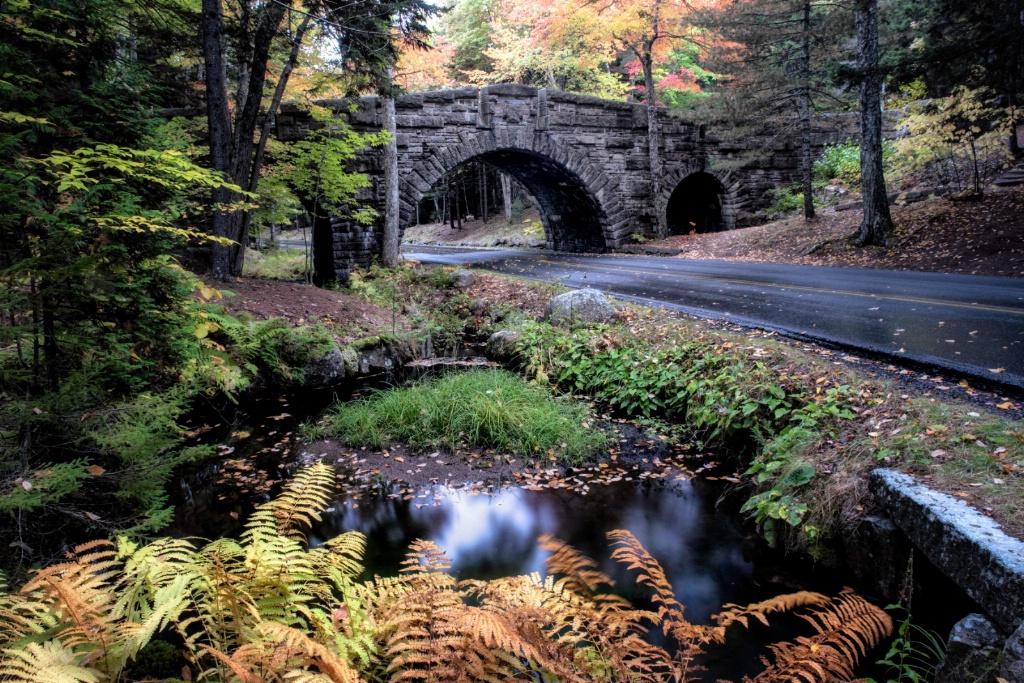 A Drive Through Acadia