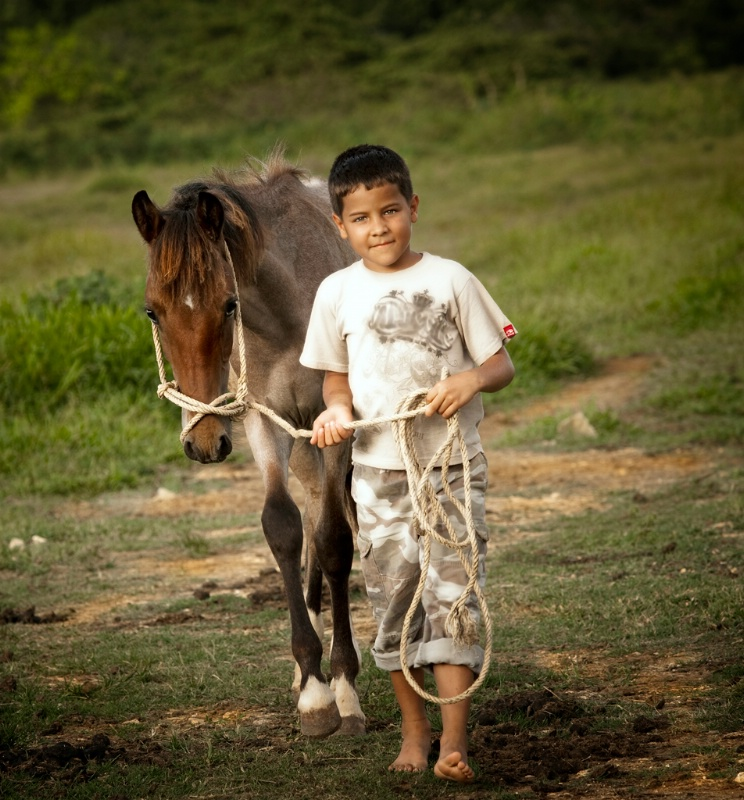 A Boy and His Pony