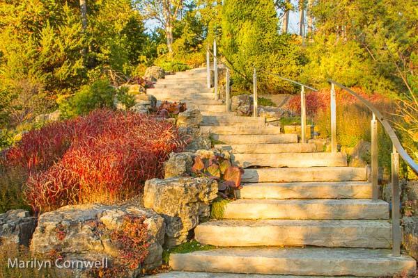 Royal Botanical Garden Rock Garden Stairway
