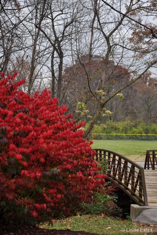 Bridge Between Seasons