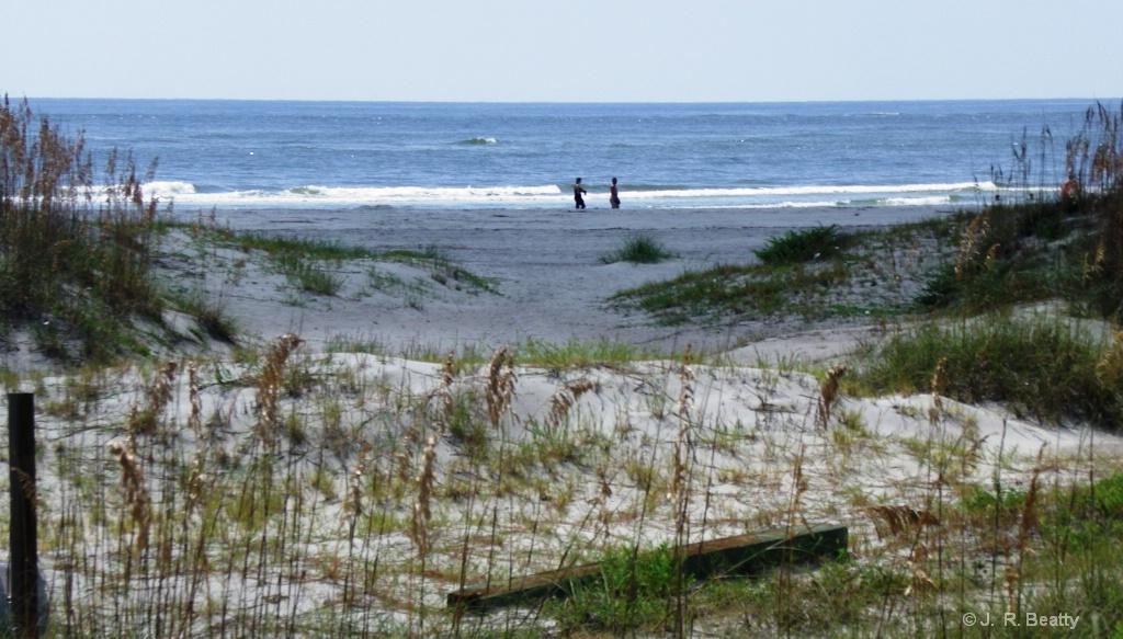 Tybee Island Beach Strollers
