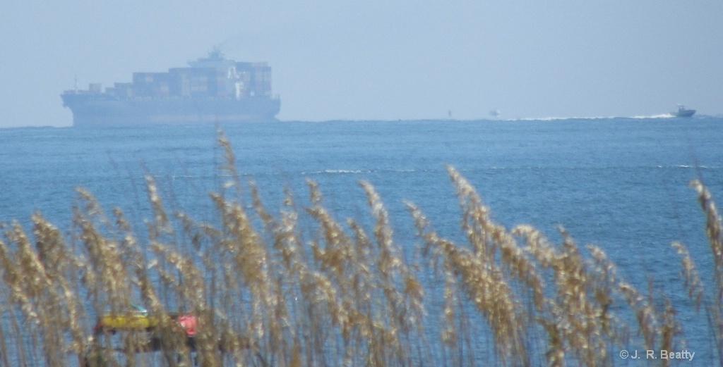 Sea Oats/Phantom Cargo Ship Off Tybee Island