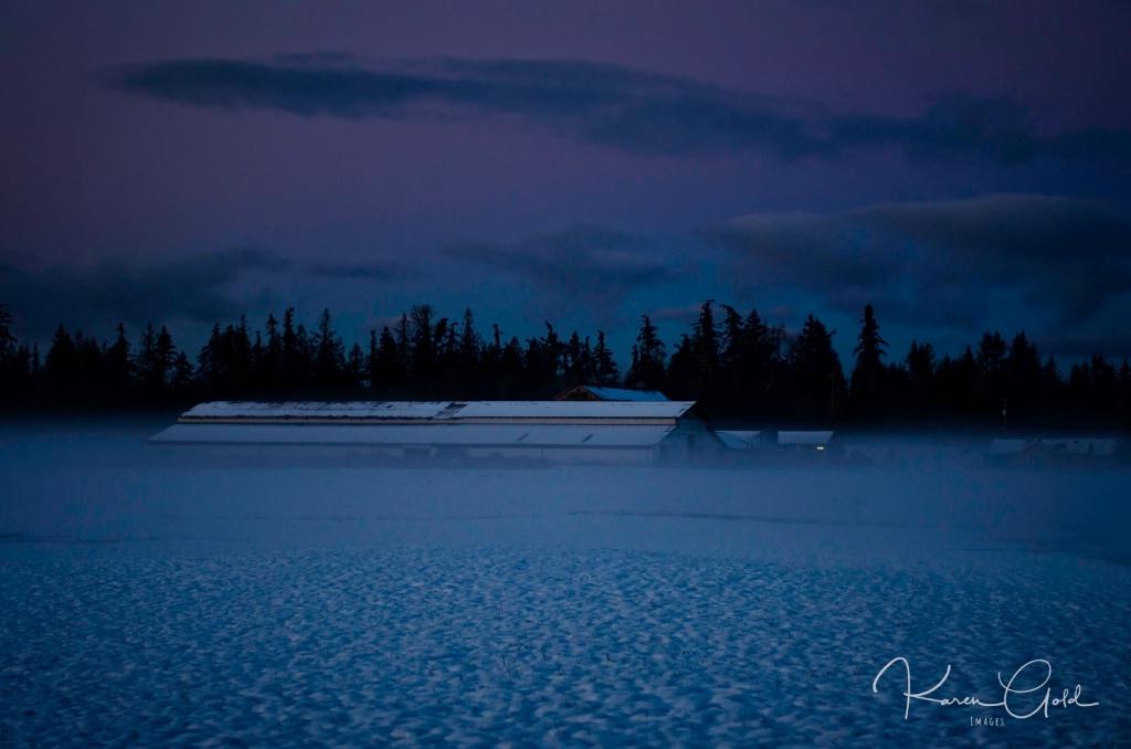 Winters Twilight