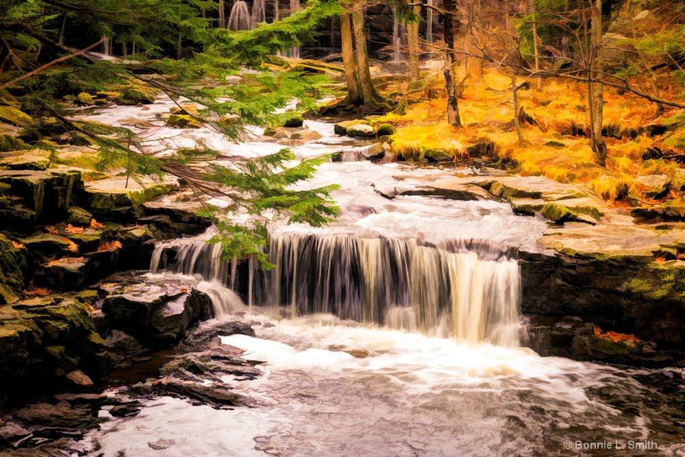 Vaughn's Woods Waterfall