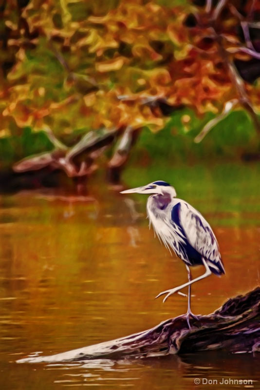 Artistic GB Heron 10-22-16 186