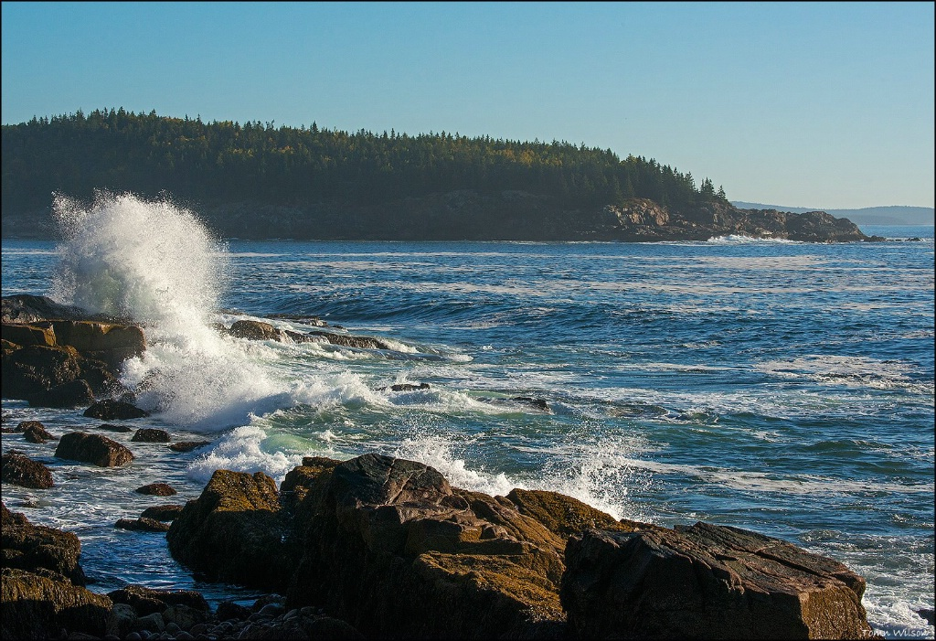Wave Breaking on Maine Coast