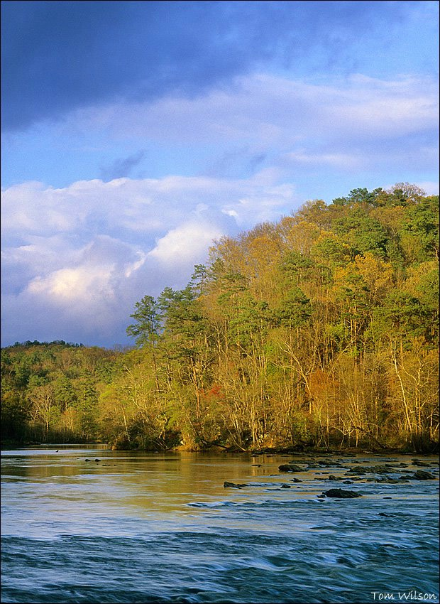 Upriver from Thornton Shoals