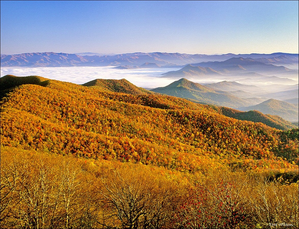 Fall View from Brasstown Bald