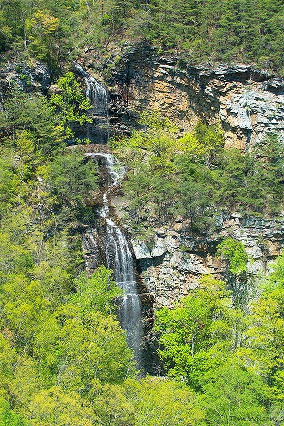Waterfall at Cloudland Canyon