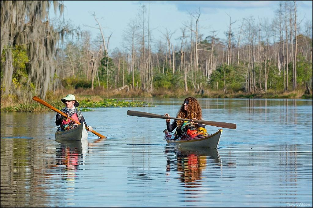 Paddlers in Okefenokee Swamp