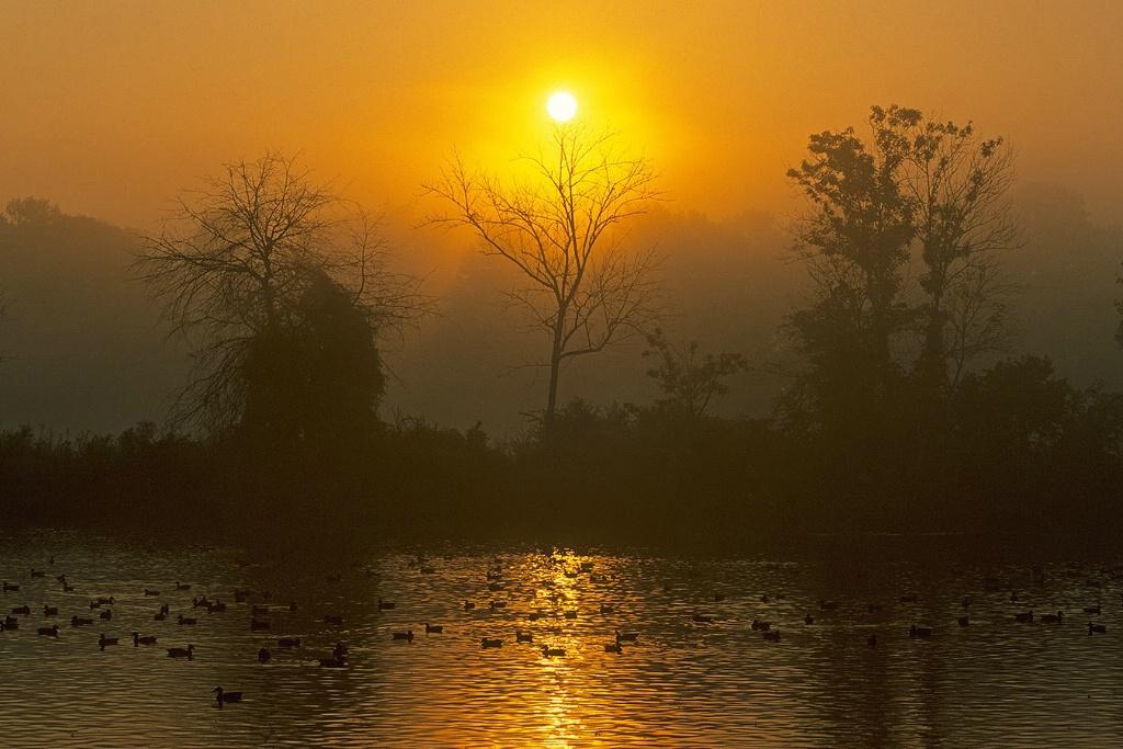 Sunrise at Wileo Park