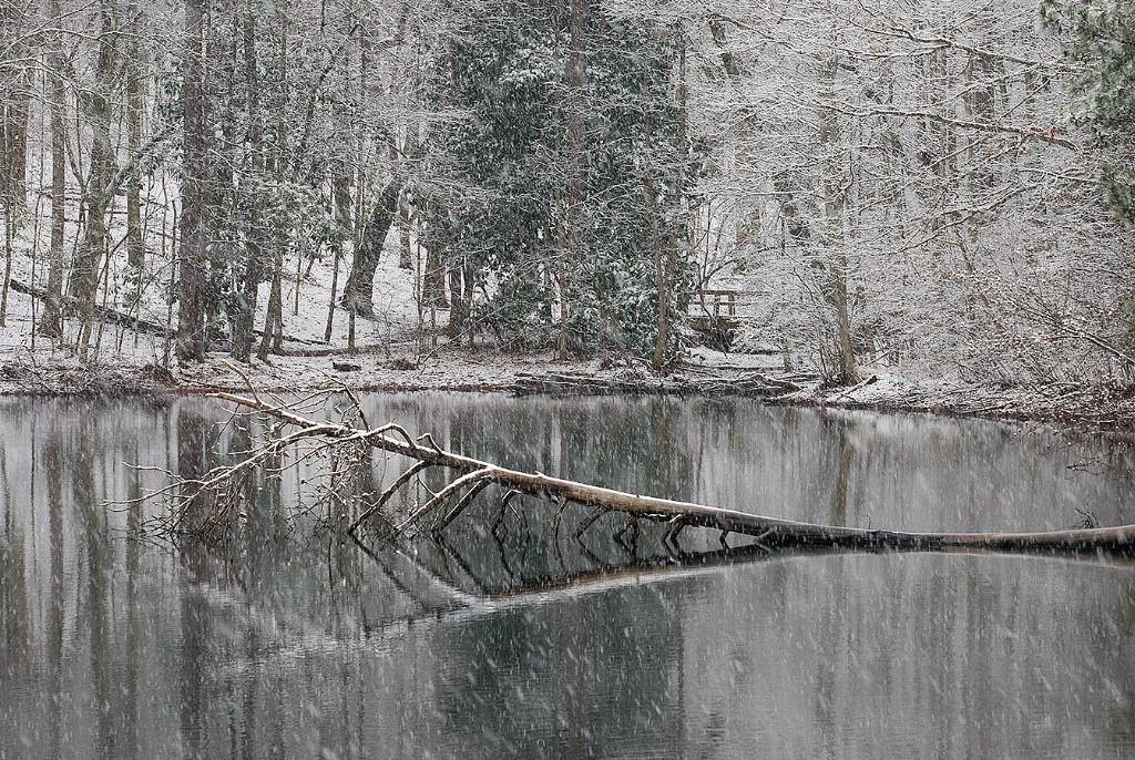 Sope Creek Snow