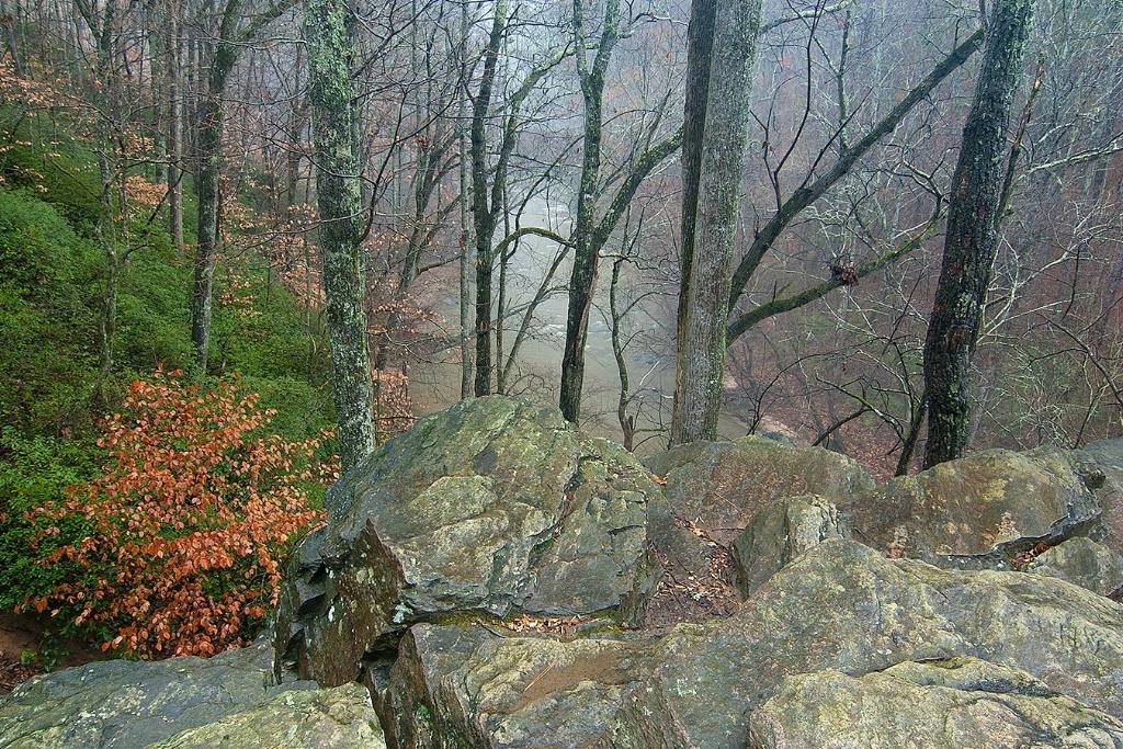 Bluffs at Vickery Creek