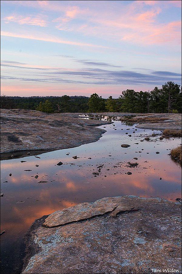 Pink LIght on Vernal Pool