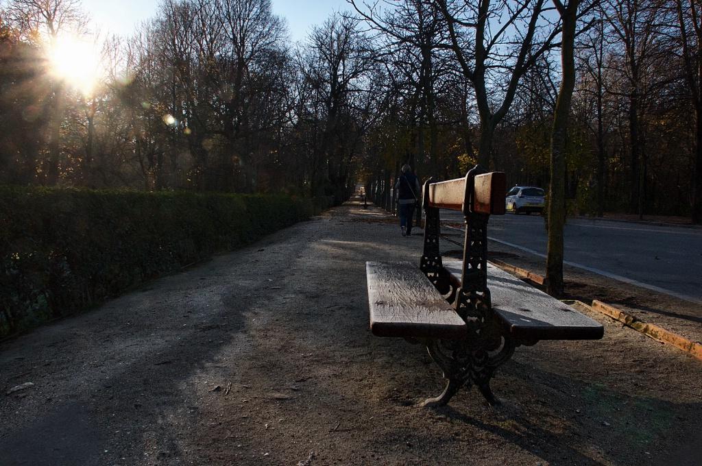 December sunrise in a Madrid Park