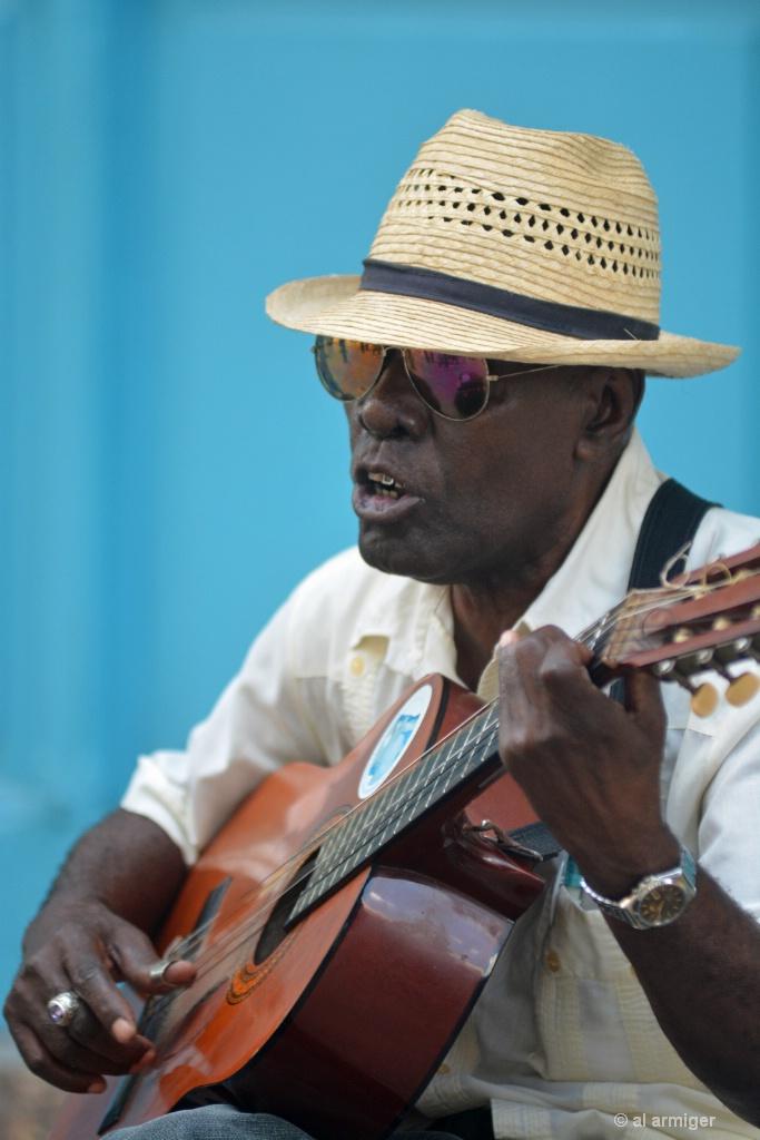 The Guitarist Havana