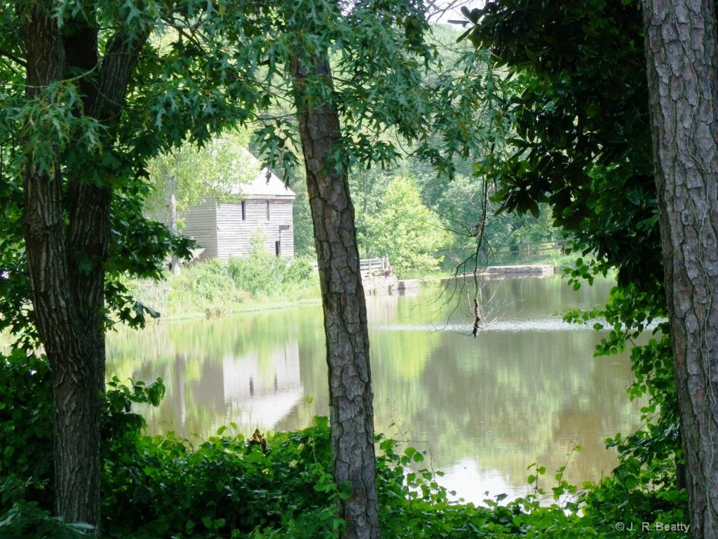Yates Mill Cross Lake View