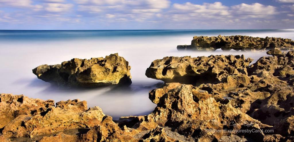 Coral Cove Seascape