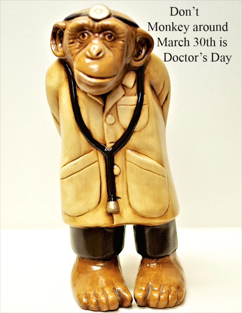 Doctor Monkey