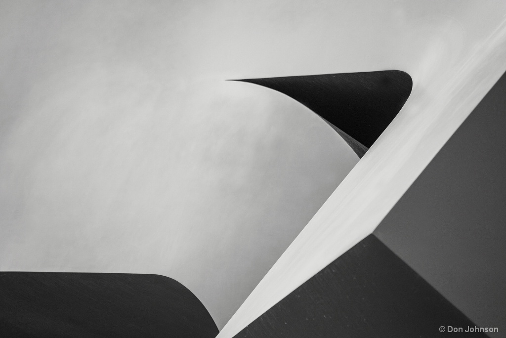 Abstract in Black and White 4-22-17 067