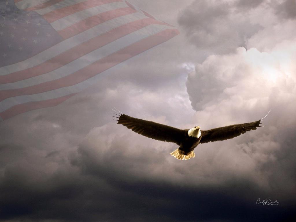 An American Symbol