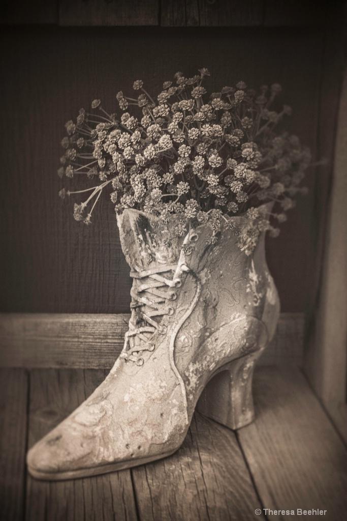 Grandma's Shoe