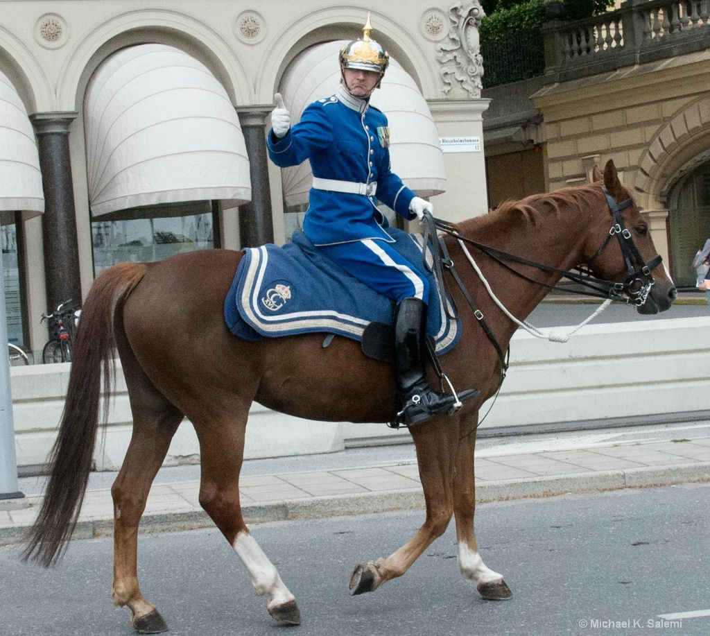 AOK With the Stockholm Horse Guard