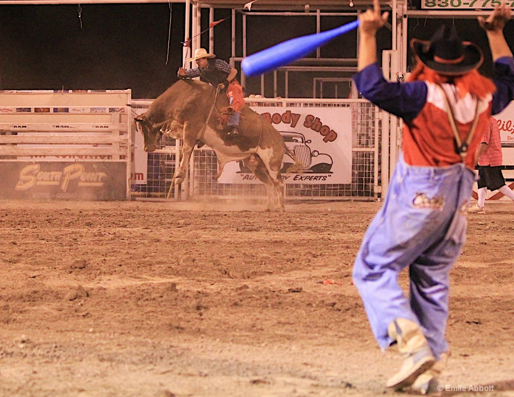 Pointing to the bull rider