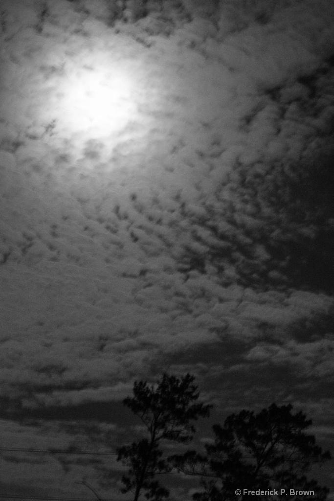 Moonlight B-W