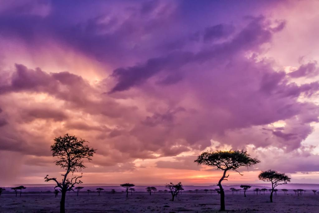 Spectacular Sunset  7256