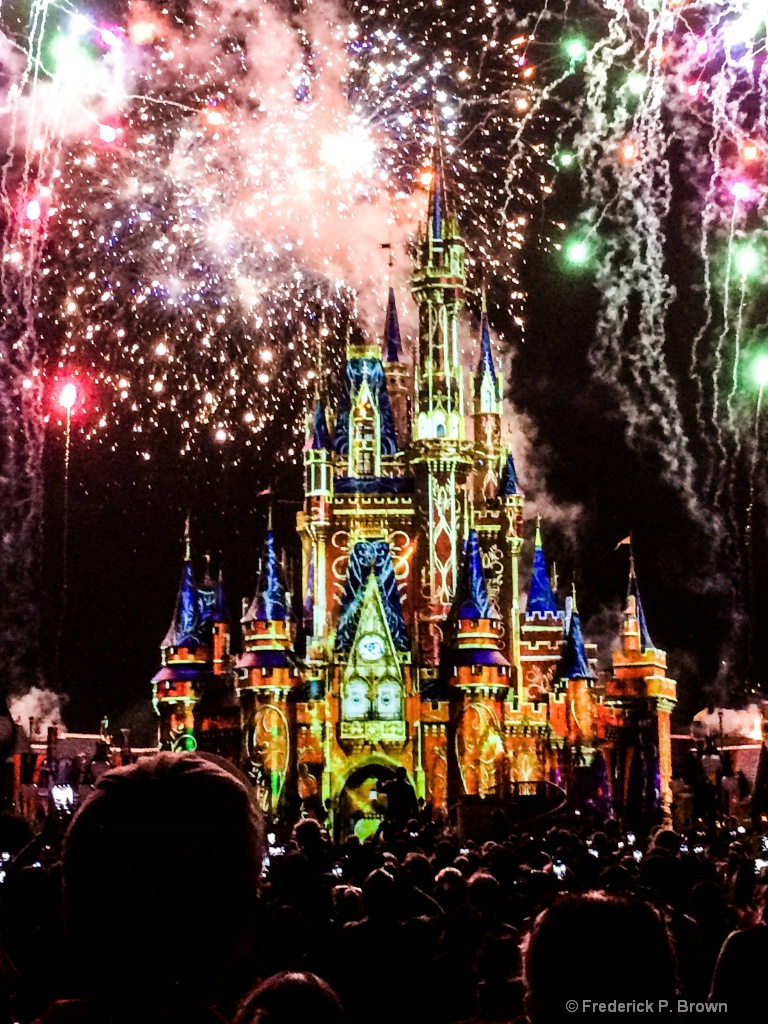 Fireworks at Disney1