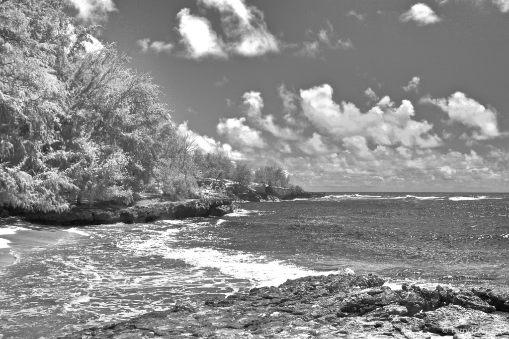 Coast of Kauai (Infrared Camera)