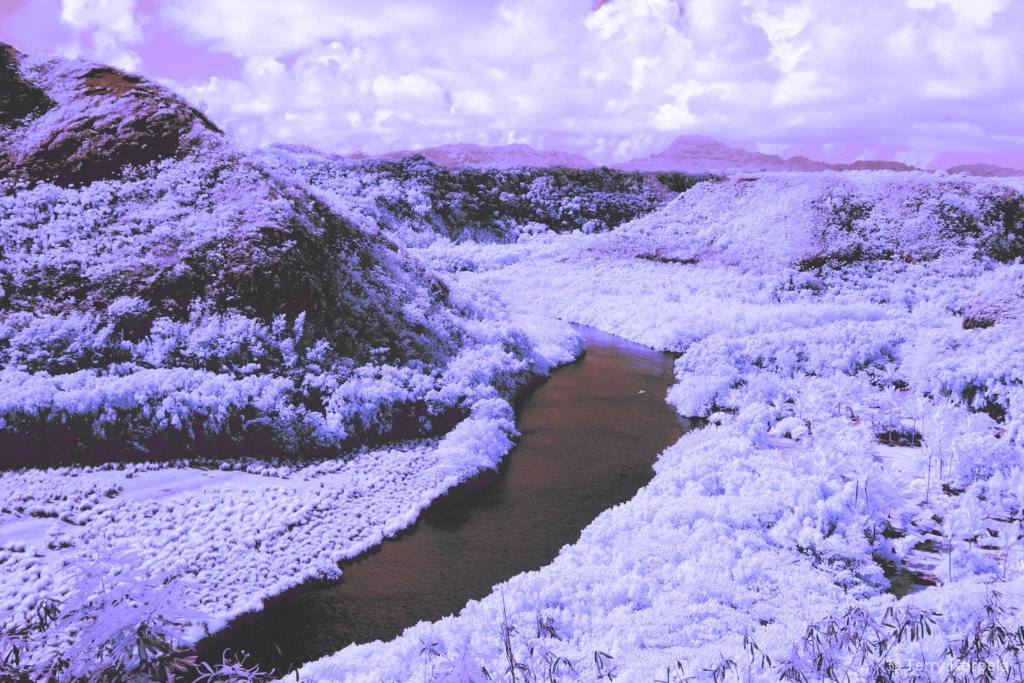 Small lake in Kauai, Hawaii (Infrared)