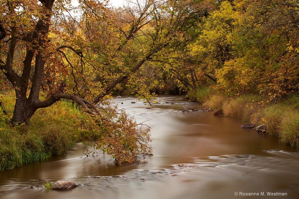 Long exposure dreamy fall river
