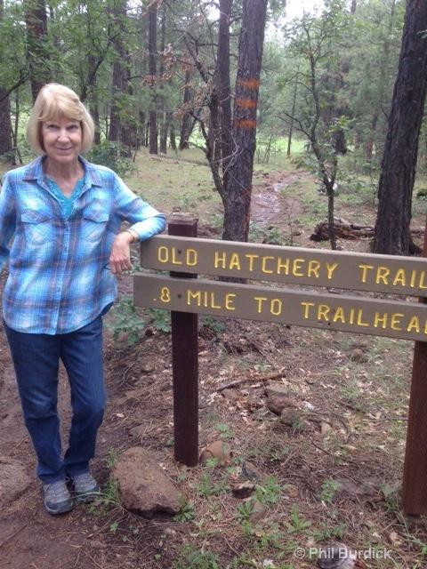 Old Hatchery Trail Show Low AZ.JPG