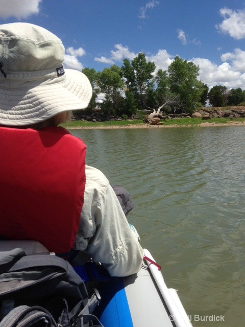 Kayaking White Mtn Lake Juniper Ridge AZ.JPG