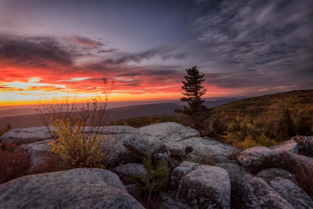 Wilderness Sunrise II