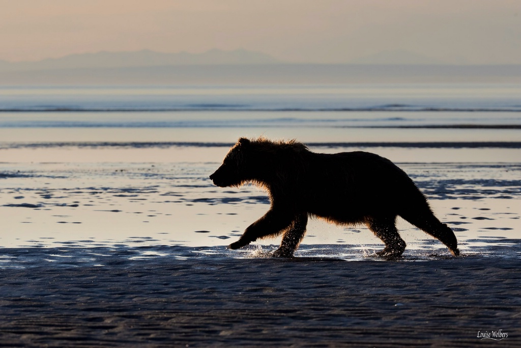 Seaside Run