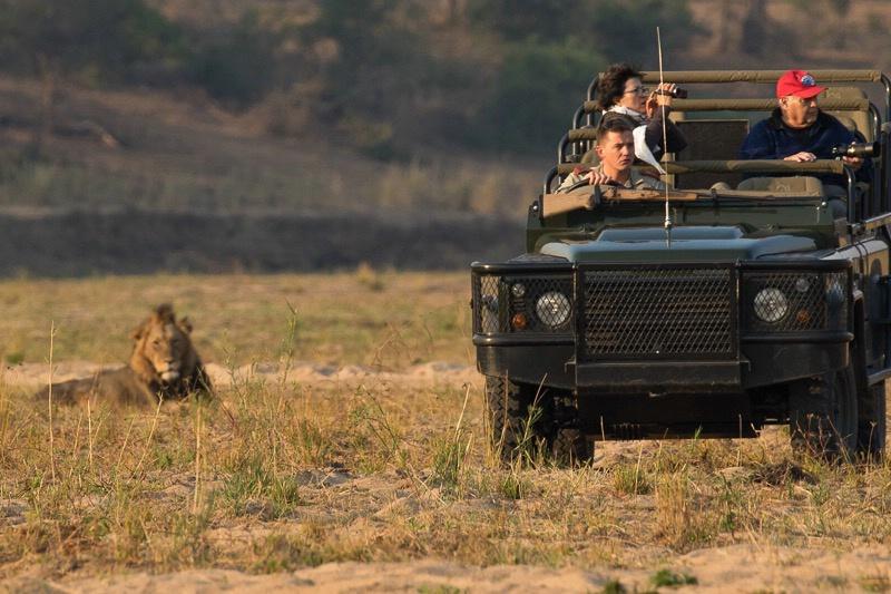 Mala Mala - Morning Safari Drive