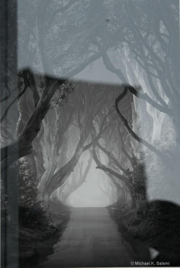 Kinsale Dark Hedges Window